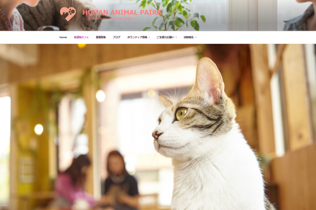 CAT HOME GARDENホームぺージ