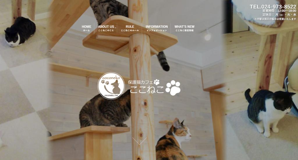 保護猫カフェ ここねこホームページ