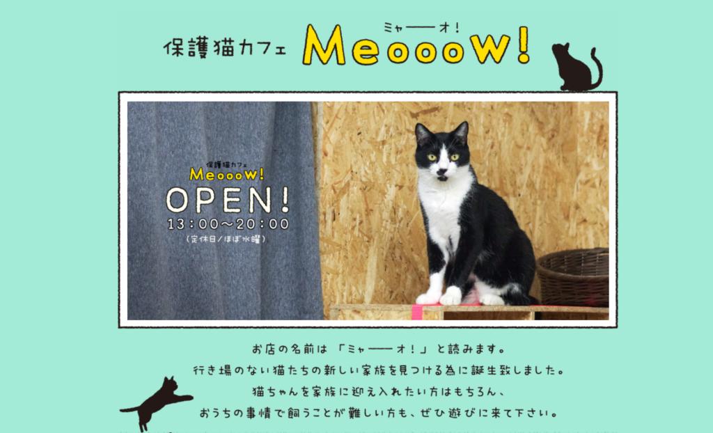 Meooow!(ミャーーーオ)ホームページ
