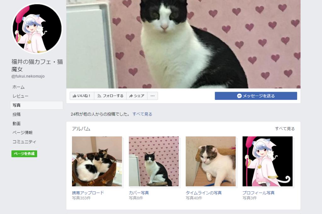 猫魔女ホームページ