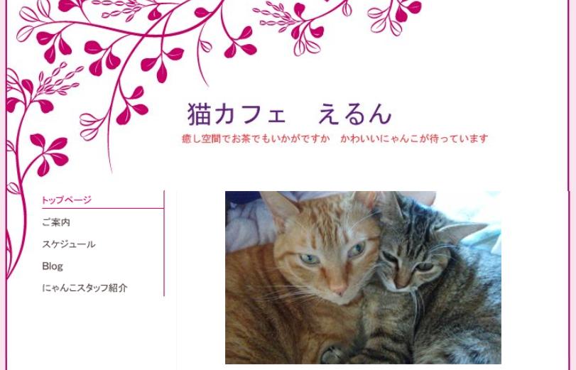 猫カフェえるんホームページ