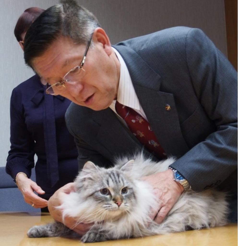 猫と秋田県知事