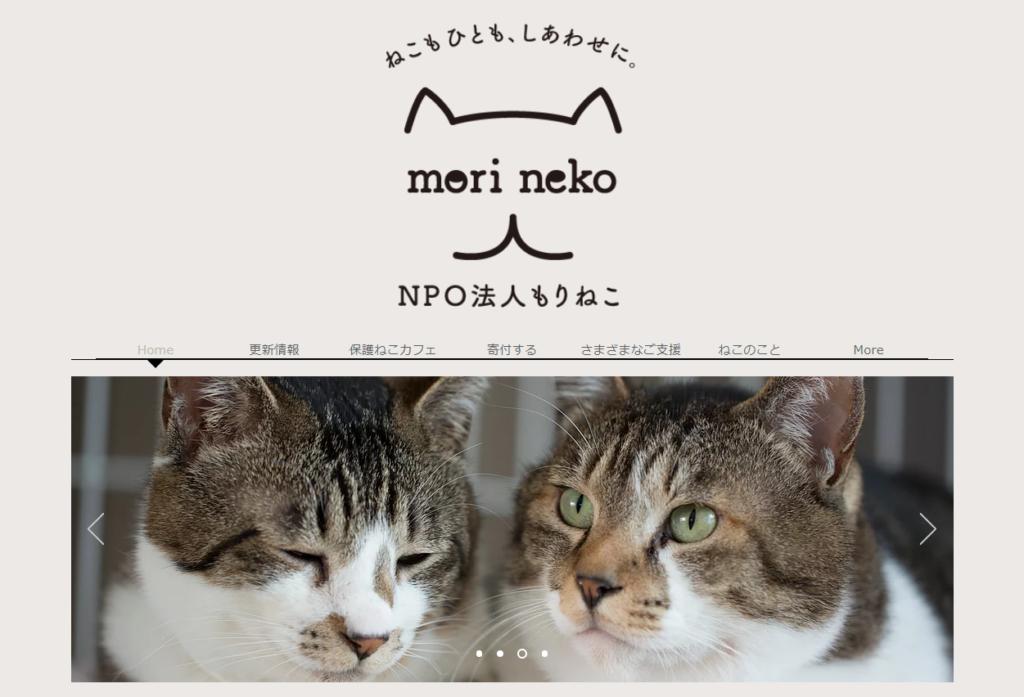 保護猫カフェ もりねこホームページ