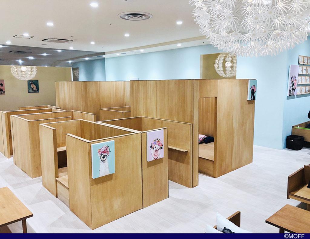 Moff animal cafe 高崎オーパ店の店内
