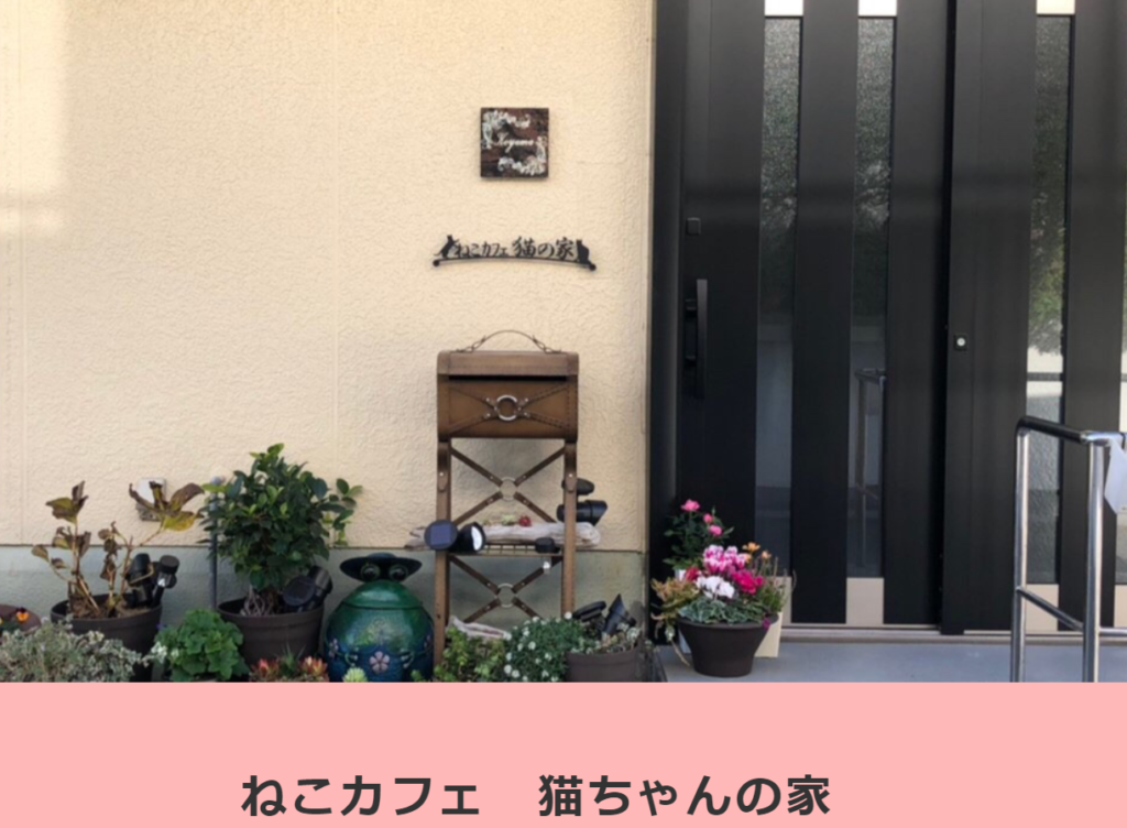 ねこカフェ猫ちゃんの家のホームページ