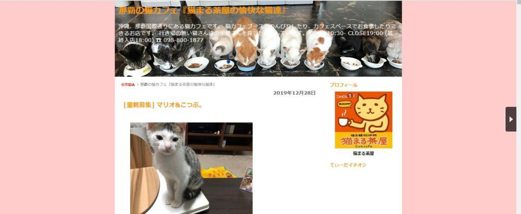 猫まる茶屋 国際通り店のホームページ