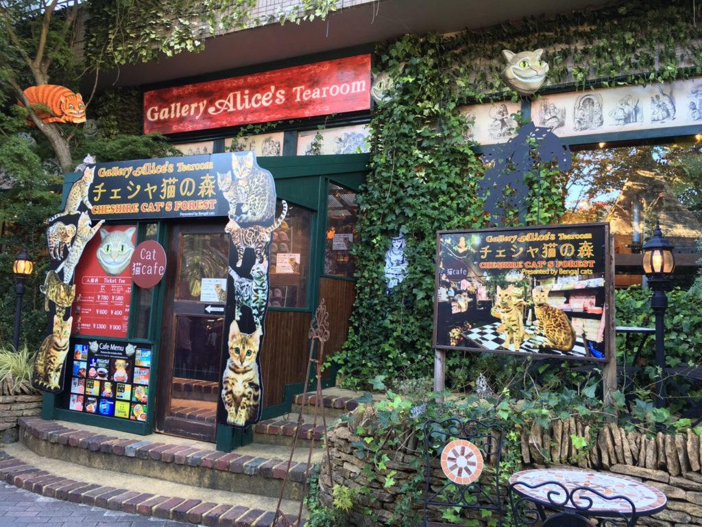 Gallery Alice's Tearoom チェシャ猫の森