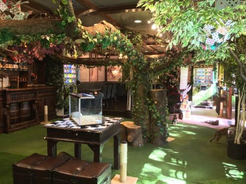 Gallery Alice's Tearoom チェシャ猫の森の店内