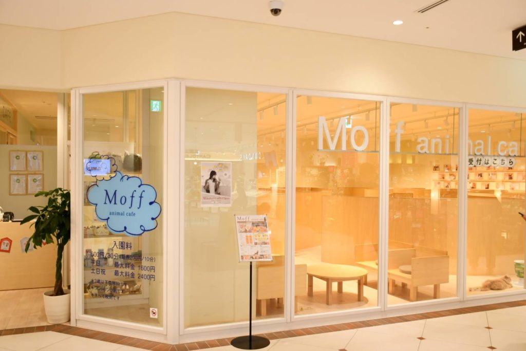 Moff animal cafe COCOSA熊本店の外観