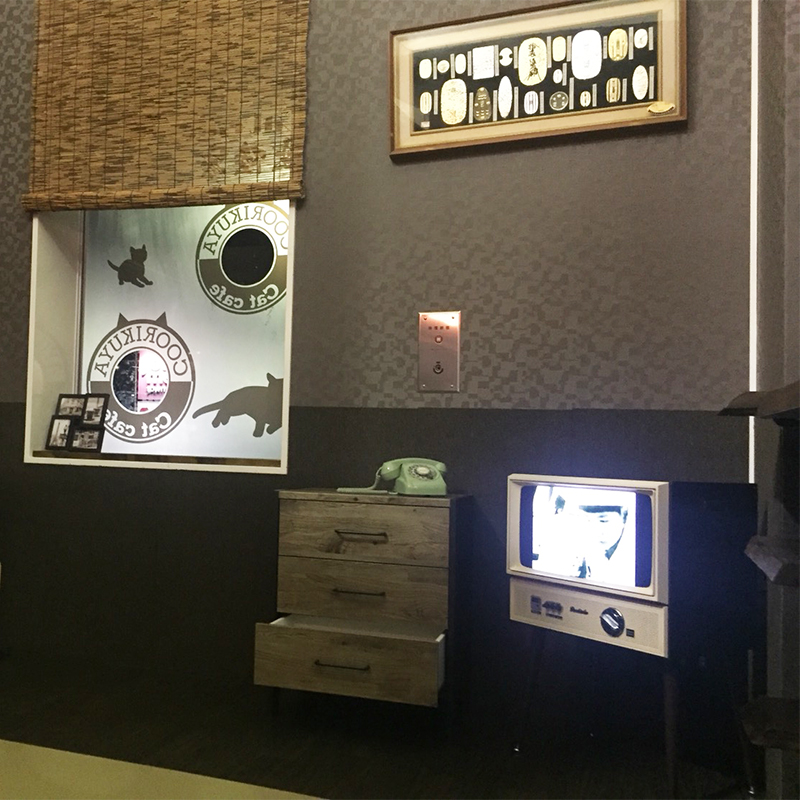 猫カフェ 猫喫茶 空陸家店内