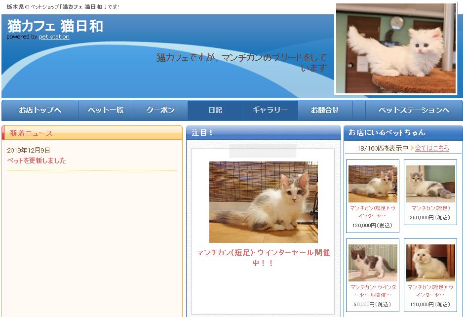 猫日和のホームページ