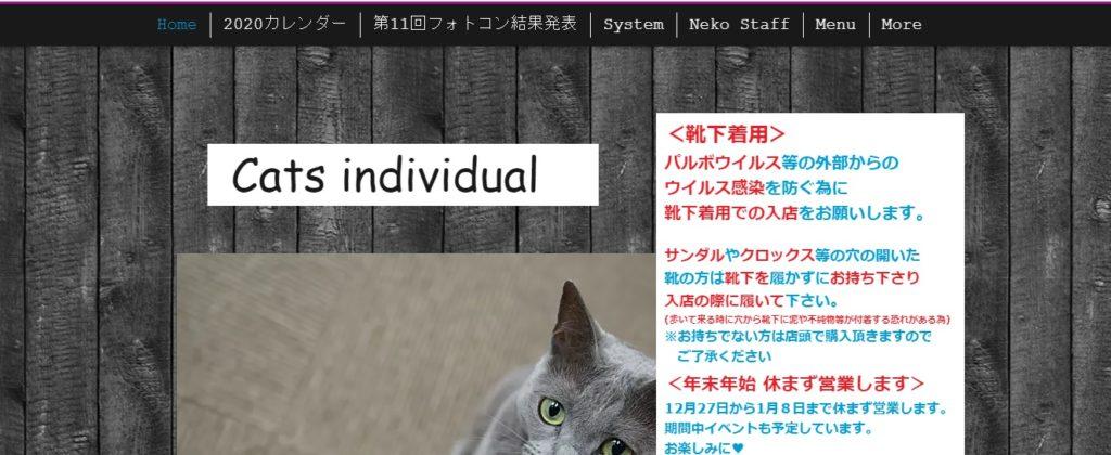 Neko Cafe MICO(ネコカフェミコ)ホームページ