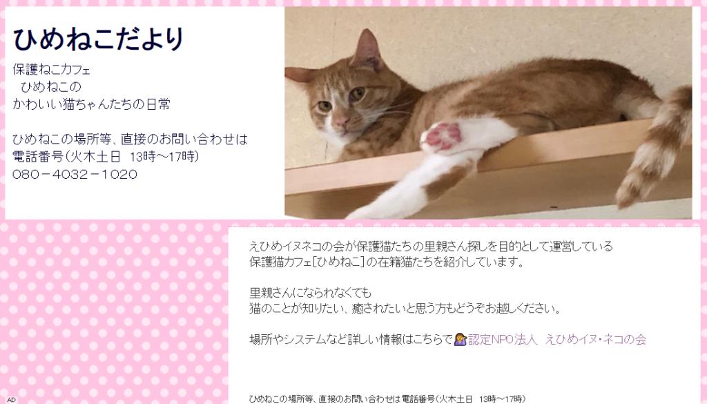 保護猫カフェひめねこのホームページ