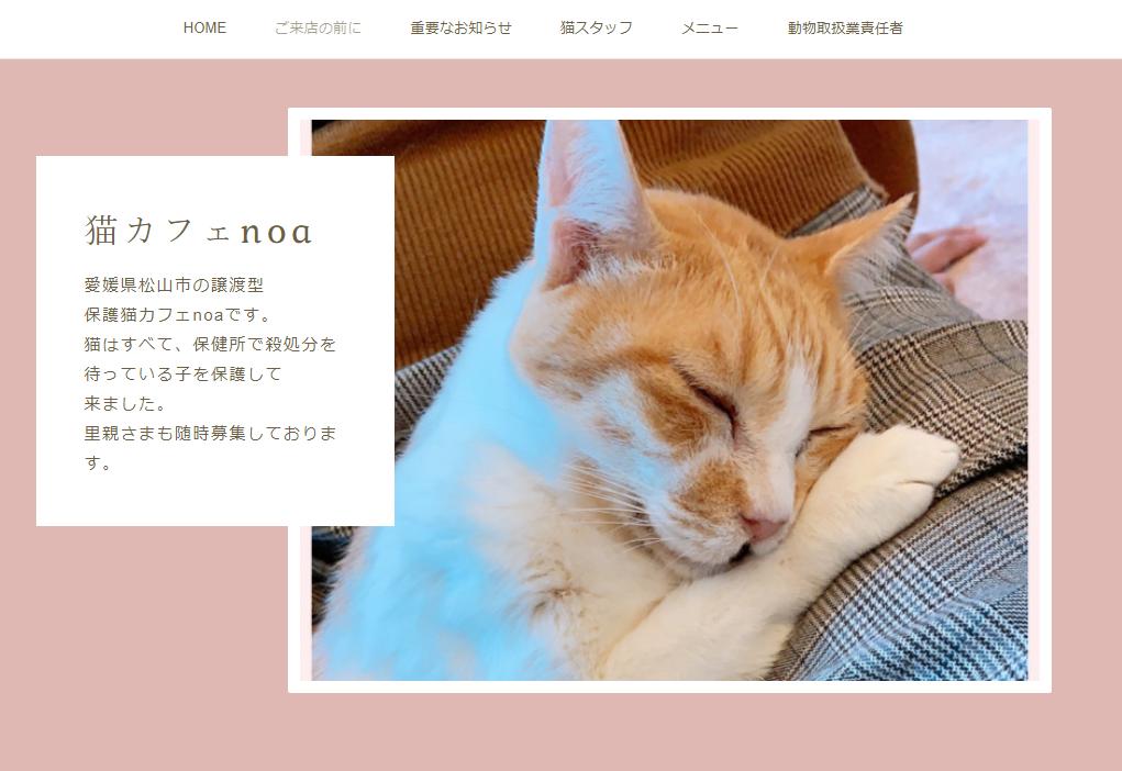 猫カフェnoaホームページ