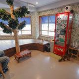 【2020年最新版】猫カフェ 空陸家 新宿三丁目ジャングル店体験レポート!
