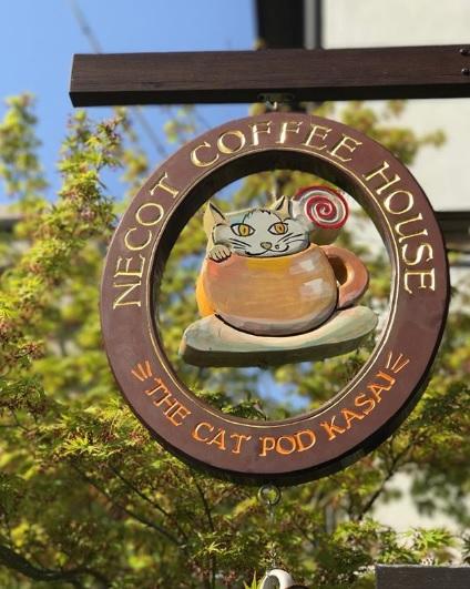 NECOT COFFEE HOUSE看板