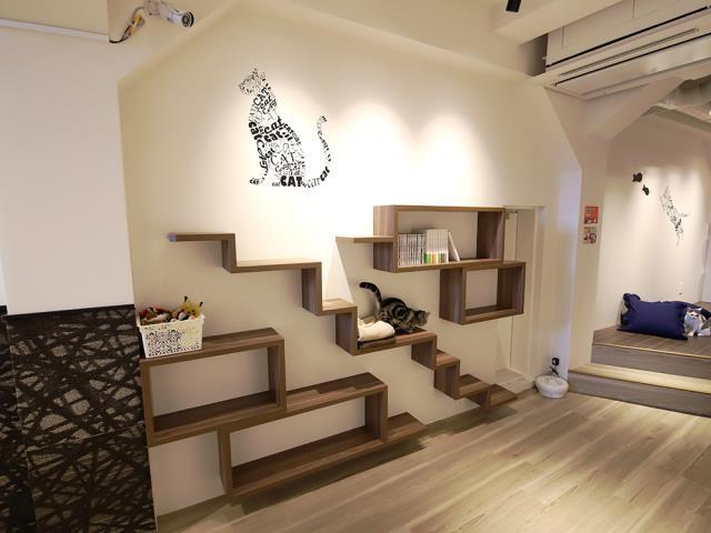 猫喫茶 空陸家plus 新宿東口駅前店
