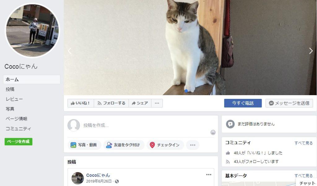 保護猫カフェ Coco