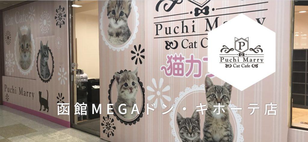 ぷちまりーMEGAドン・キホーテ函館店