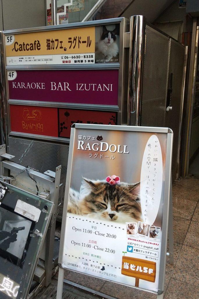 猫カフェ ラグドールの看板