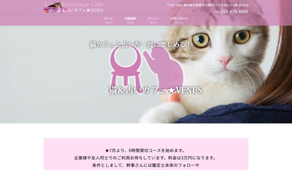 猫&占いカフェ★VENUS