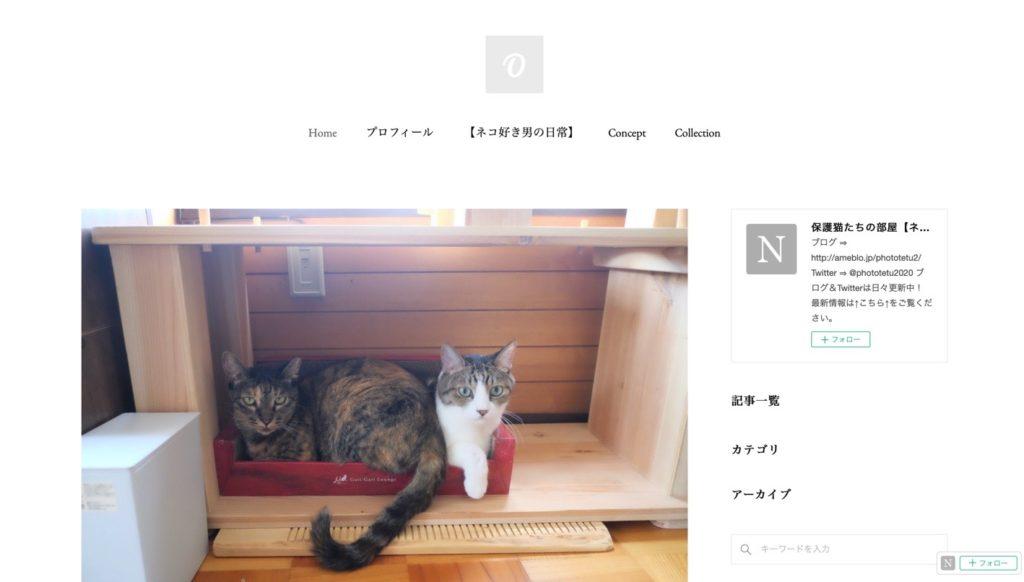 保護猫カフェ ネコノミカタ