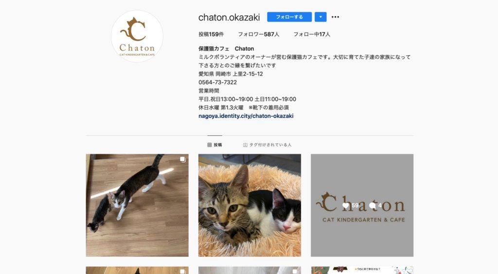 保護猫カフェ Chanton