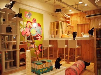 cat cafe ねこびやか -黒猫cm-の店内