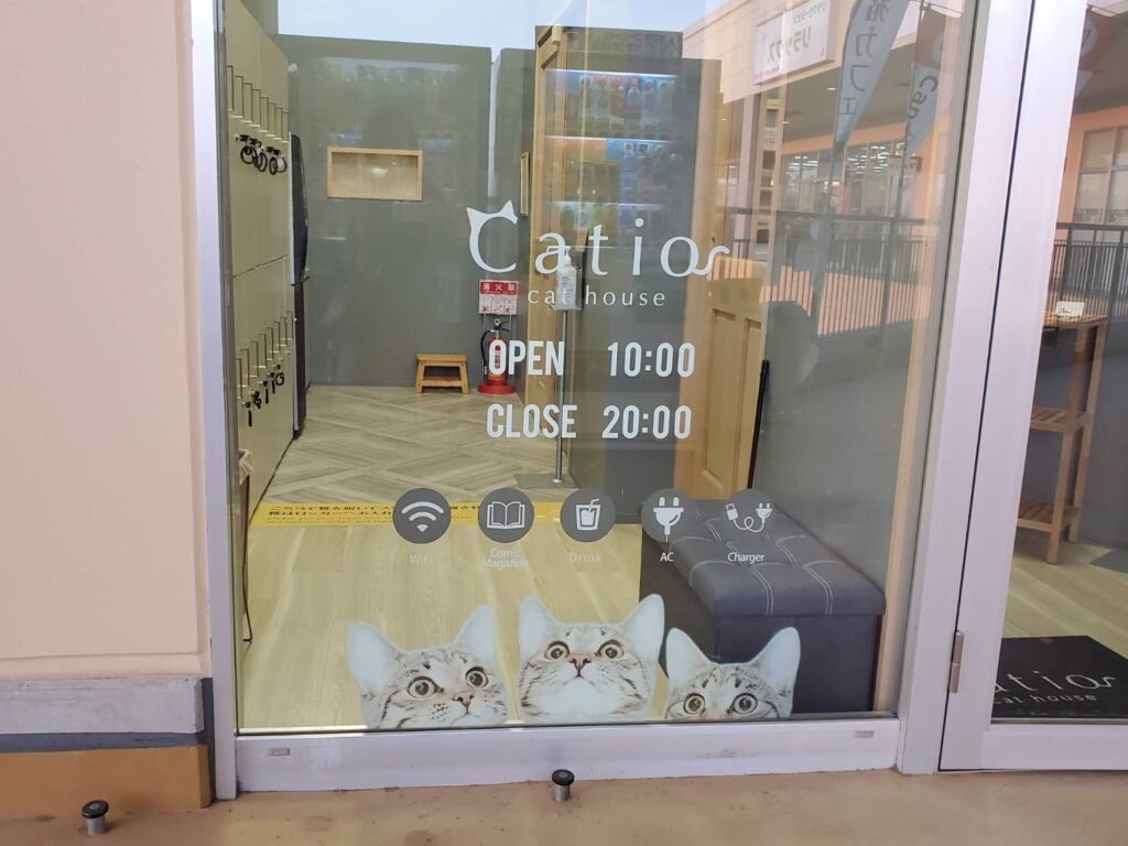 Catio入口