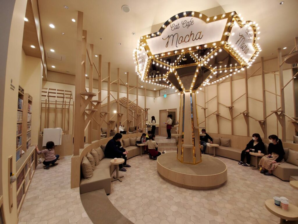 猫カフェモカイオンモール筑紫野店