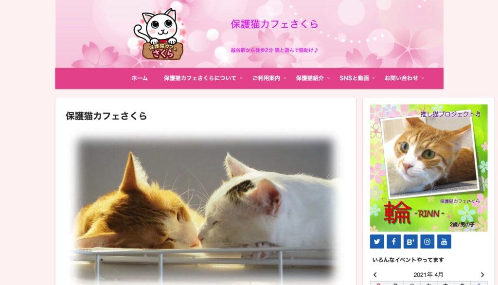 保護猫カフェさくらホームページ