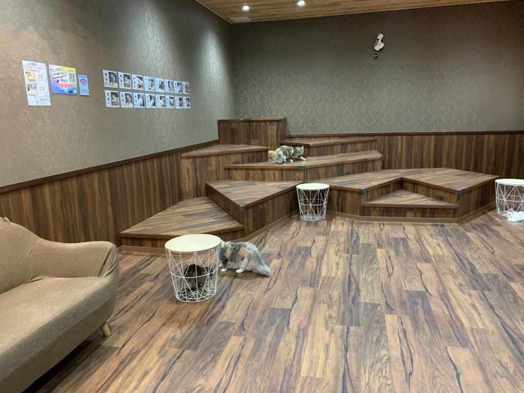 空陸家 ニットーモール熊谷店